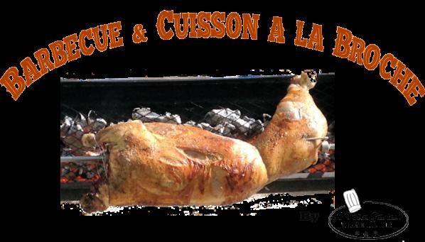 Logo web barbecue et broche finalcouleur